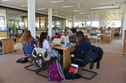 More than a Library and a Media Center: a Learning Commons